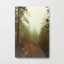 Autumn in Ponderosa Pines Forest Metal Print