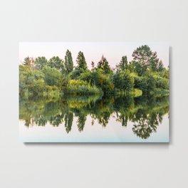 nature heals an aching soul Metal Print
