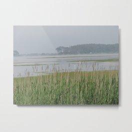 Chincoteague Marsh Metal Print