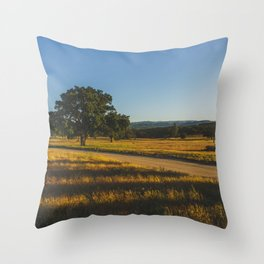 Campo - Pacific Crest Trail, California Throw Pillow