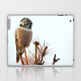 Finding the balance Laptop & iPad Skin