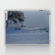 Frozen German Lake Laptop & iPad Skin