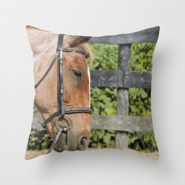 Spotted by a strawberry roan Throw Pillow