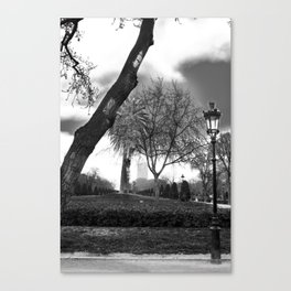 Cloudy day in the park Canvas Print