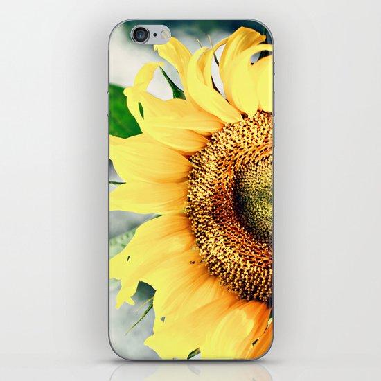 Sunflower's better half iPhone & iPod Skin