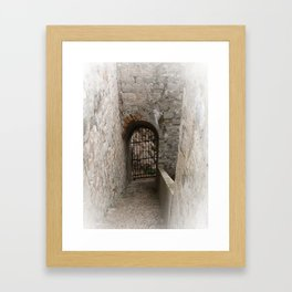 The Gate Framed Art Print