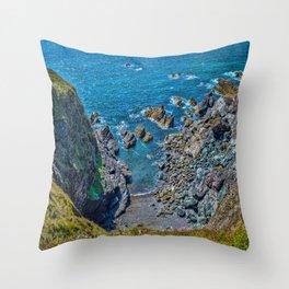 Lizard Walk - Cove Leftside Throw Pillow