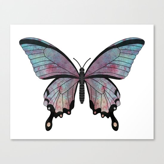rainbow swallowtail (Papilio regnbogi) Canvas Print