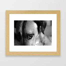 Guilty As Charged Framed Art Print