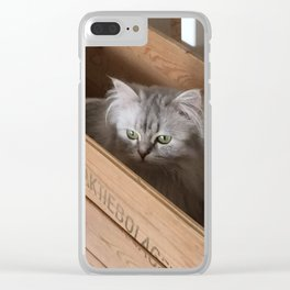 Chinchilla perser. Clear iPhone Case
