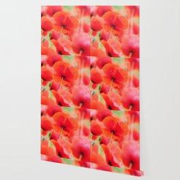 poppies square mural, in closeup Wallpaper