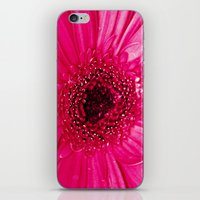 hot pink iPhone & iPod Skins featuring Hot Pink by Tracey Krick Photography