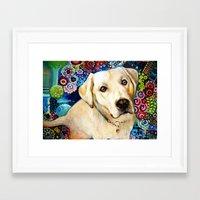 labrador Framed Art Prints featuring   Labrador by oxana zaika