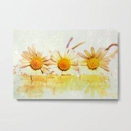 summerfeeling Metal Print