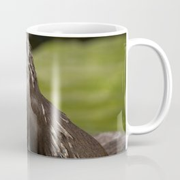 Otter Emerging From The Water Coffee Mug