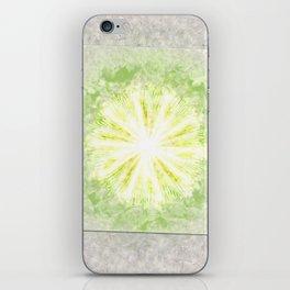 Triptychs Unveiled Flower  ID:16165-114729-45271 iPhone Skin