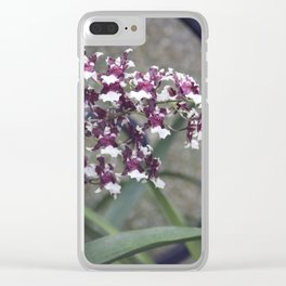Longwood Gardens Autumn Series 247 Clear iPhone Case