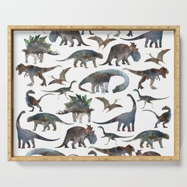 New Dinosaurs pattern Serving Tray