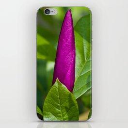 Pink Magnolia Bud iPhone Skin