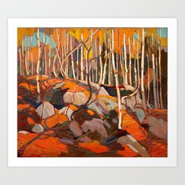 Tom Thomson ‑ Birch Grove, Autumn - Canada, Canadian Oil Painting - Group of Seven Art Print