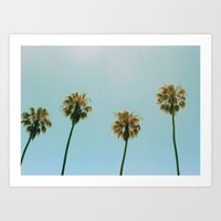 palm avenue Art Print