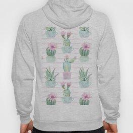 Simply Echeveria Cactus on Desert Rose Pink Wavy Lines Hoody