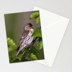 Good Morning Tweety! Stationery Cards