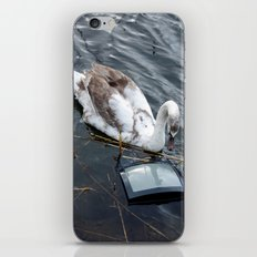 The swan and the tv iPhone & iPod Skin