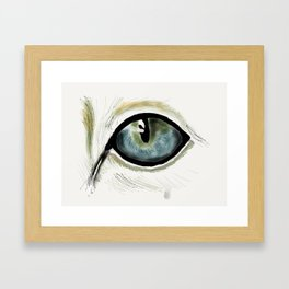 Cat's Eye Framed Art Print