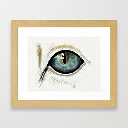 Cat's Eye Framed Art Print