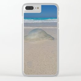 the Gilly fish northern coast of Egypt Clear iPhone Case