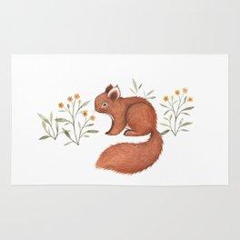 Furry Squirrel Rug
