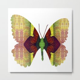 PhotoSynthesis/Butterfly1030023 Metal Print