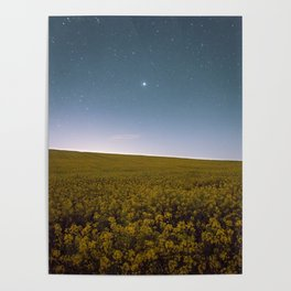 Fields of Yellow, Stars and Blue Poster