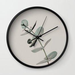 Stretch: minimalist botanical eucalyptus Wall Clock