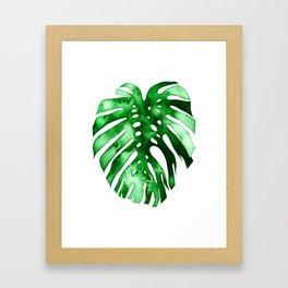 Monstera (green) Framed Art Print