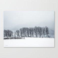 White winter II Canvas Print