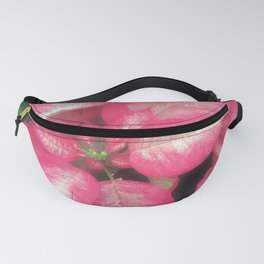 Poinsettia in pink Fanny Pack