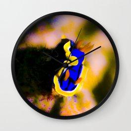 Chromatic Chromodoris Wall Clock