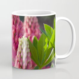 Pink flower towers (small-flowered lupin) Coffee Mug