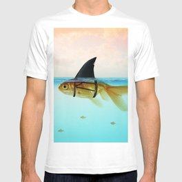 goldfish with a shark fin T-shirt