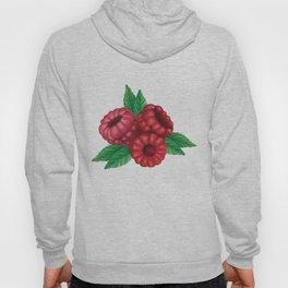 Three raspberries on a branch patern black background Hoody