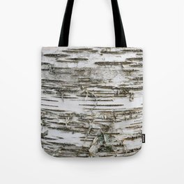 Birch Tree 2 Tote Bag