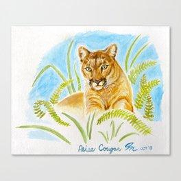 Reise Cougar on Hilltop Canvas Print