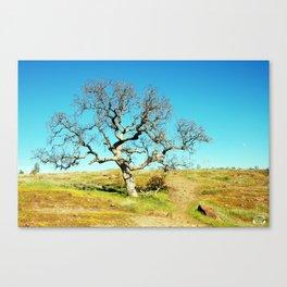 City Of Trees Canvas Print