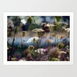 Nature's Palette  Art Print