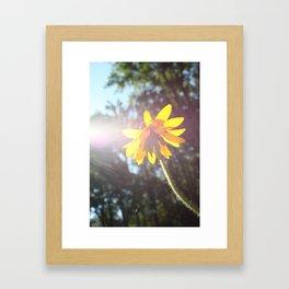 Feel the Sun Framed Art Print
