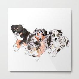 4 little Aussie Puppies Metal Print