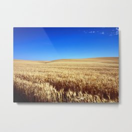 Fields of Gold Metal Print