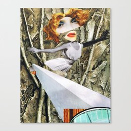 bird - collage Canvas Print